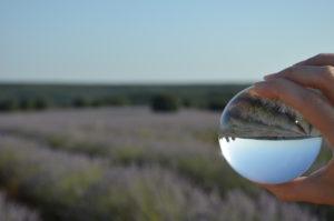 Brihuega Con Algas en la Maleta